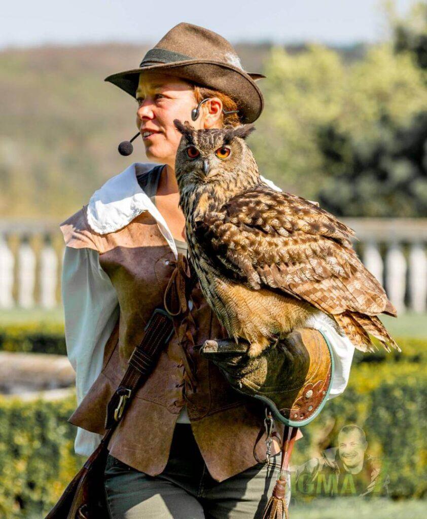 Ein Uhu sitzt auf der Hand seiner Falknerin